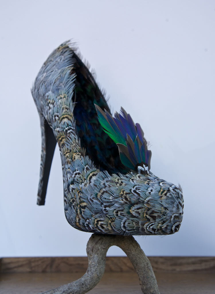 """Teal Heel""  pheasant and teal feathers on a shoe in a glass case"